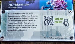 Baumlehrpfad