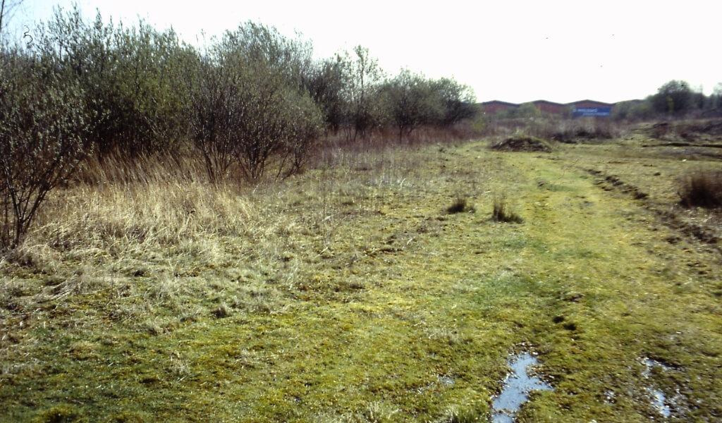Naturschutzgebiete Ellingshorst