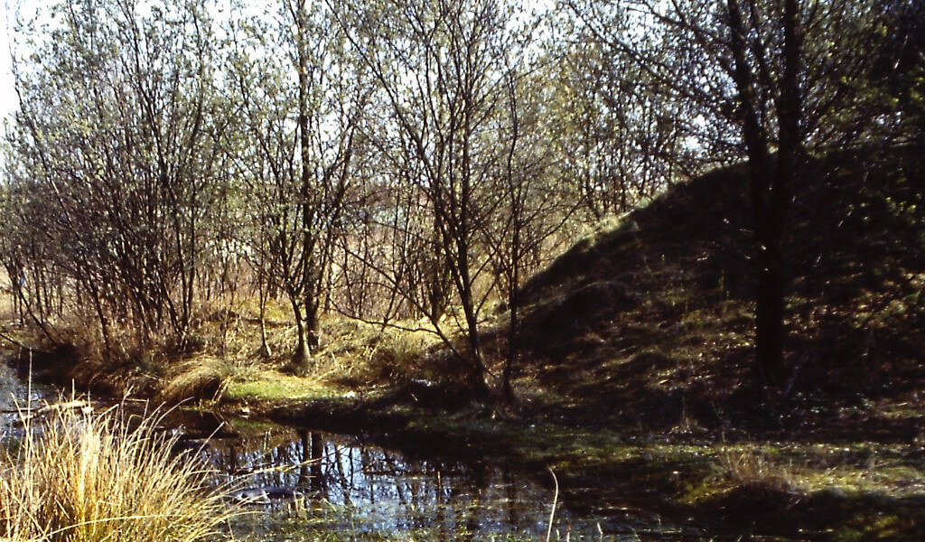 Naturschutzgebiete Ellinghorst